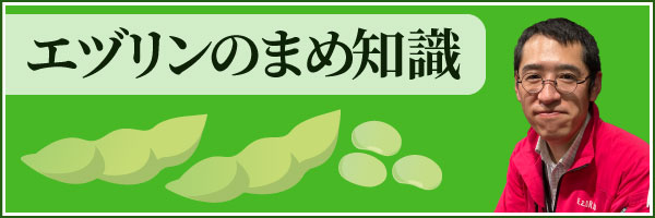 エヅリンの豆知識